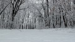 Trail path in frosty day 2 Stock Footage