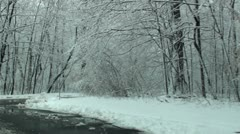 Driving through park in frosty day 3 Stock Footage