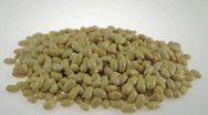 Stock Video Footage of beans