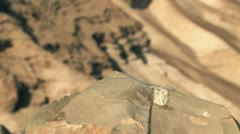 Desert View from Masada Stock Footage