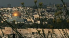 Flowers and the Dome of the Rock  Stock Footage