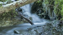 Timelapse of blurred water in small creek during spring Stock Footage