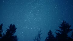 Stock Video Footage of 4K Stars Turn Through Trees, Time Lapse