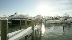 Miami International Boat Show 2012 Stock Footage