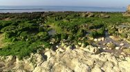 Stock Video Footage of Algarve 03