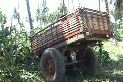 Improvised wagon Stock Footage