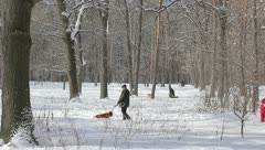 The walking people in the city forest area Stock Footage