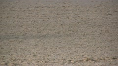 Closeup of legs and feet running on the beach Stock Footage