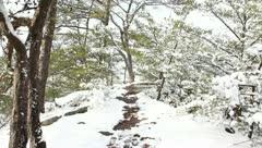 Winter hike Stock Footage