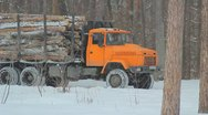 Stock Video Footage of The wood industry truck in the city forest