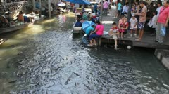 People are feeding the fish in front of a temple Stock Footage