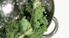 Kale being washed in super slow motion Stock Footage