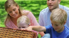 Family looking into a picnic basket Stock Footage