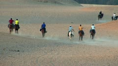 Horses in the Desert Stock Footage