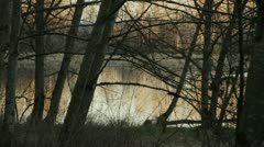 Lake in Woods Stock Footage