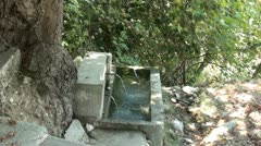 Watertrough in forest Stock Footage