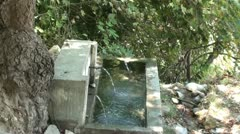 Watertrough in forest zoom in Stock Footage
