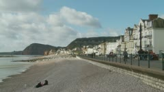 Dogs in a seaside town in England Stock Footage