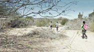 Desert Trail Stock Footage