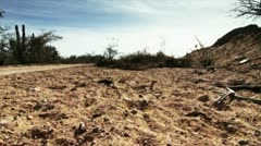 Desert Ground Stock Footage