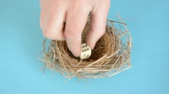Successful easter nest with egg and dices Stock Footage