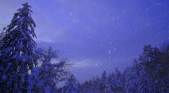 Snowing mountain forest scenes Stock Footage