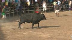 Corridas de toros Stock Footage