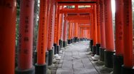Stock Video Footage of Torii Gates in Kyoto, Japan