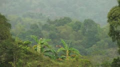 Tree covered mountains during rainfall in Philippines Stock Footage
