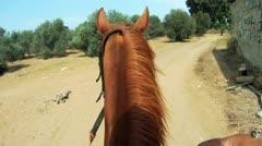 Stock Video Footage of 431 GoPro, Riding a horse