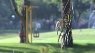 Stock Video Footage of 040 TWO SWINGERS IN A PARK