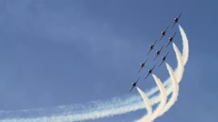 Snowbirds 002 Stock Footage
