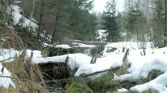 Spring water flow Stock Footage