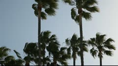 Strong wind in California Stock Footage