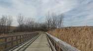 Stock Video Footage of Path through the wetlands