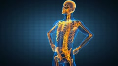 Human radiography scan Stock Footage