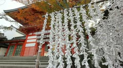 Yasaka shrine gate Stock Footage