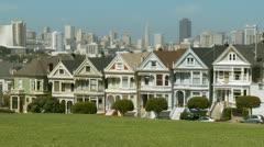 San Francisco Painted Ladies 03 HD - stock footage