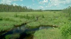 Small river in Siberia. Stock Footage