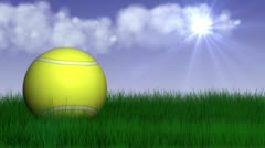 Tennis grass 2 Stock Footage