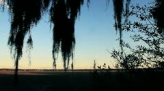 Deep South Inlet Stock Footage