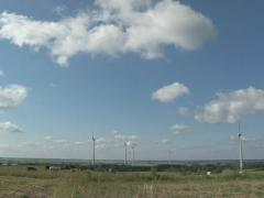 Animal cow windmill wing Stock Footage