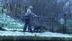 Cold Dog Walker 2 Stock Footage