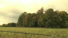 Field in fall Stock Footage