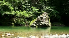 Mountain river in the jungle. - stock footage