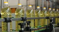 Stock Video Footage of Production of sunflower oil in the factory