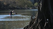People, Couple paddleing canoe on Ocklocknee River in Florida Stock Footage