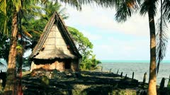 Traditional South Pacific Island Hut Stock Footage
