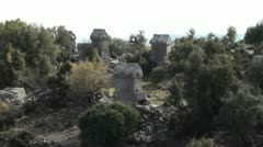 Tombs between trees - stock footage