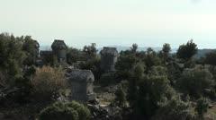 Tombs between trees 2 Stock Footage